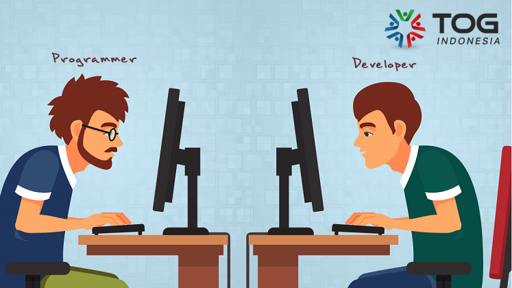 Programmer vs Developer