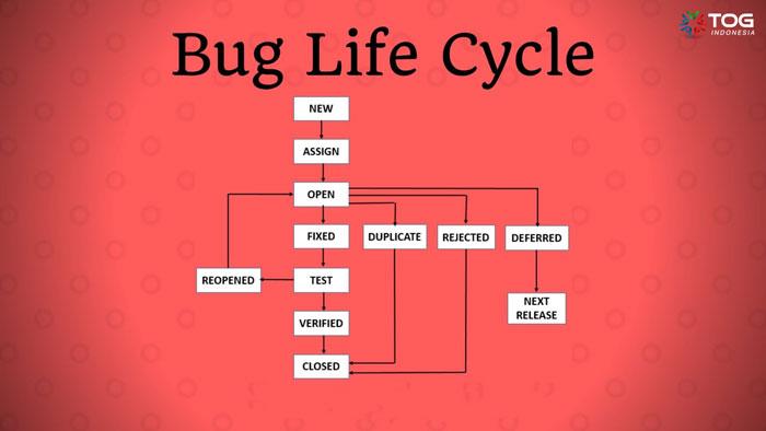 Apa yang Dimaksud Defect / Bug Life Cycle Di Software Testing ?