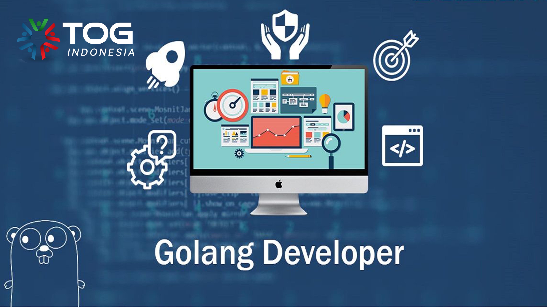 Golang Developer adalah