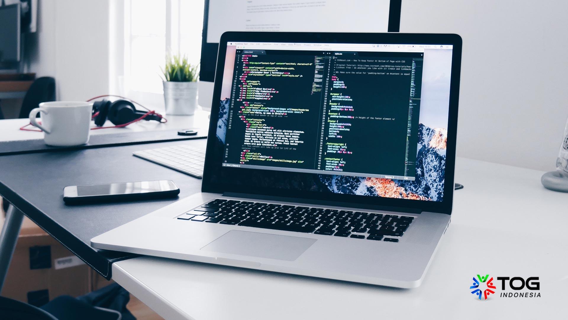 Perbedaan Web Developer dengan Web Programmer