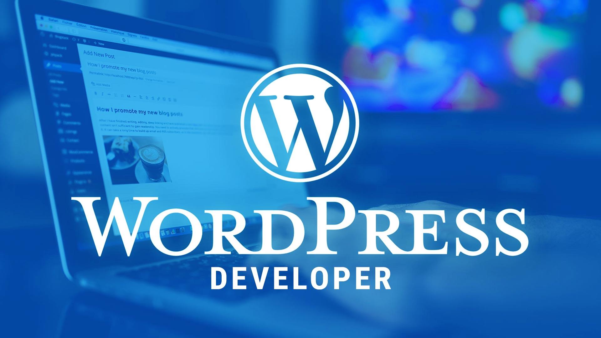 Mengenal WordPress Developer, Salah Satu Profesi yang Menjanjikan